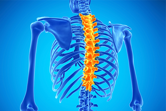 How To Treat Thoracic Spinal Pain